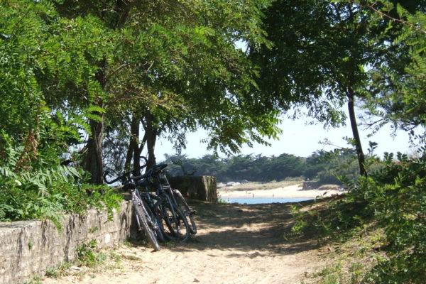 Vélo-Les-Portes - Ile de Ré